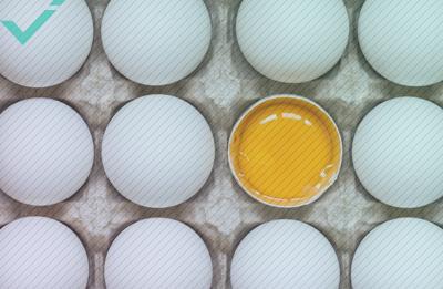 Equipo noruego encarga 15.000 huevos tras un error de traducción