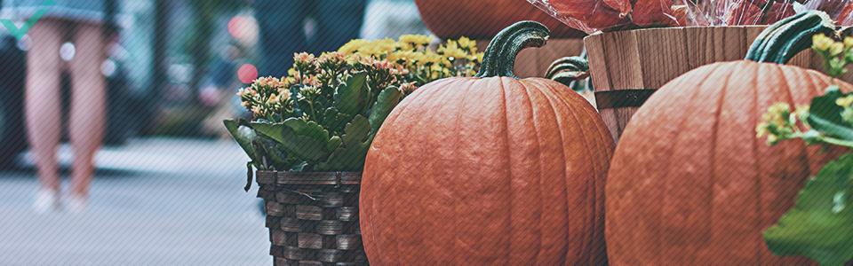 Alrededor del 48% de los italianos celebran Halloween.